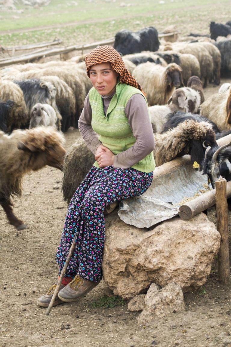 Hatice Mit den Nomaden